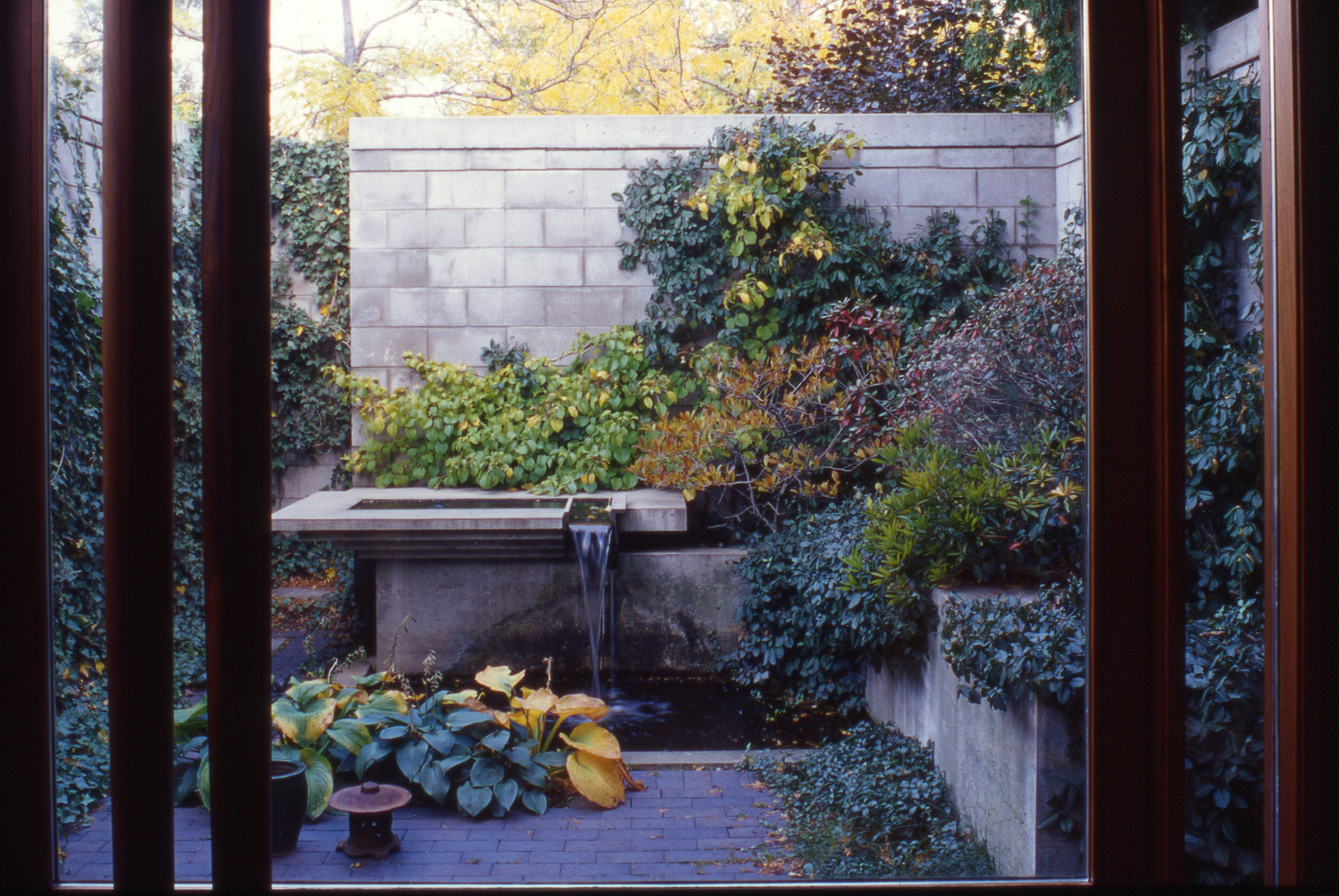 View of exterior courtyard garden from the interior